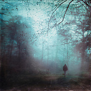 Moody November morning with  a man walking on a forest path - texturized photograph