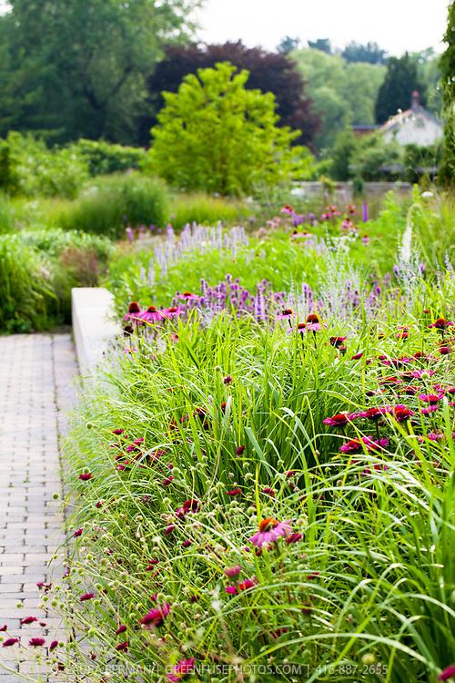 Midsummer Perennial border