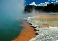 Champagne Pools, colorful thermals in Rotorua, Northern Islalnd, New Zealand.