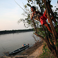 Amazon - Malaria