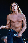 Iggy Pop and The Stooges performs live on the main stage during day two of the Isle of Wight Festival 2011 at Seaclose Park on June 11, 2011 in Newport, Isle of Wight.  (Photo by Simone Joyner)