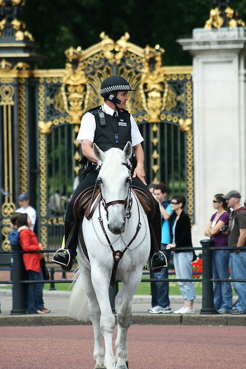 A policeman on horseback during the Changing of the Guard ceremony outside Buckingham Palace in London, The policeman is dressed in a summer uniform and is riding a white horse.