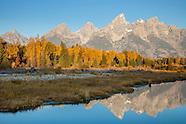 Greater Yellowstone Ecosystem