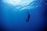 A lone skin diver plys  the waters of the Andaman Sea, India.