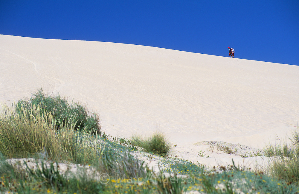 People walking on a sand dune, Tarifa, Spain