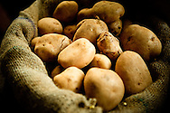 India, Kochi. Potatoes.<br /> <br /> Kochi was known for a long time as the main centrum of Indian spice trade. Although today it's only a shadow of its former glory, walking on Bazaar Road in Mattancherry still it's possible to feel its atmosphere, meet the traders of famous  specialities of Kerala, visit old Indian ginger factory  and smell the Indian spices.