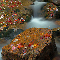 Scenic nature photography images of this idyllic New England fall foliage and cascade long exposure photography scenery at Fume Brook from the Franconia Notch State Park in the White Mountains region of New Hampshire are available as museum quality photography prints, canvas prints, acrylic prints or metal prints. Prints may be framed and matted to the individual liking and decorating needs:<br />