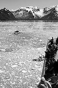 Alaska, USA, touring boat near a glacier. In black and white