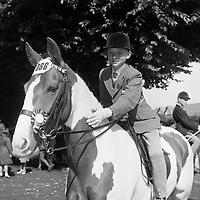 RDS Horse Show. Master Hugh Small patting his pony Sally, after winning second place in the Childrens Pony Class..08.08.1963