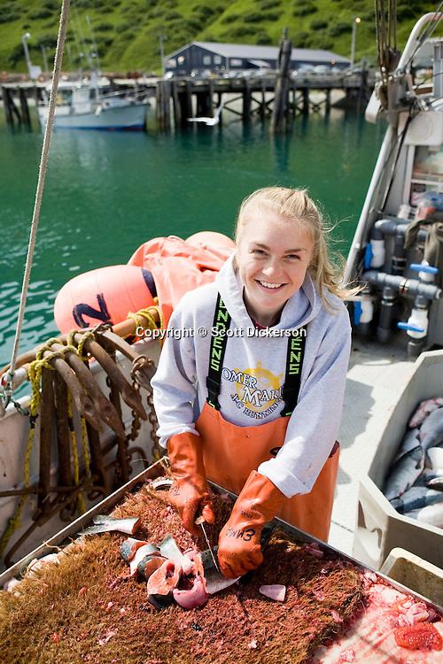 deckhand cutting salmon for halibut bait scott dickerson