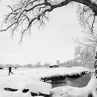 A runner trains along a snow-covered trail on South Boulder Creek in Boulder, Colorado