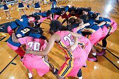 2014-15 A&T Women's Basketball vs NCCU