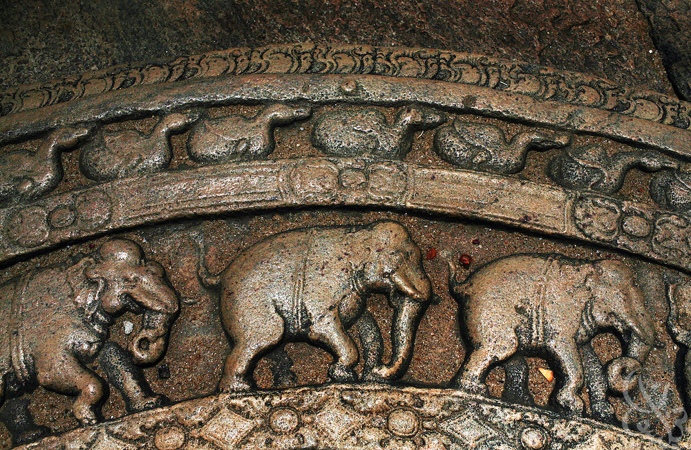 An elephant themed moonstone  is seen among the ruins of the ancient city of Polonnauruwa, Sri Lanka August 14, 2008. Moonstones are distinctive door step decorations found in ancient Sri Lankan architecture.