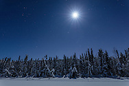 A moonlit night sky over Clunie Lake in Southcentral Alaska. Winter.