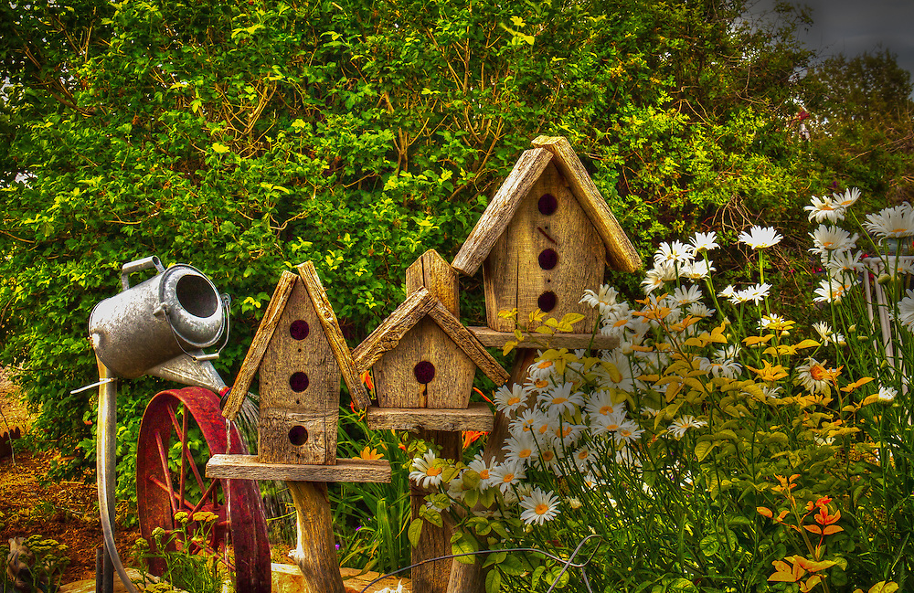 A lovely garden with a community for birds.