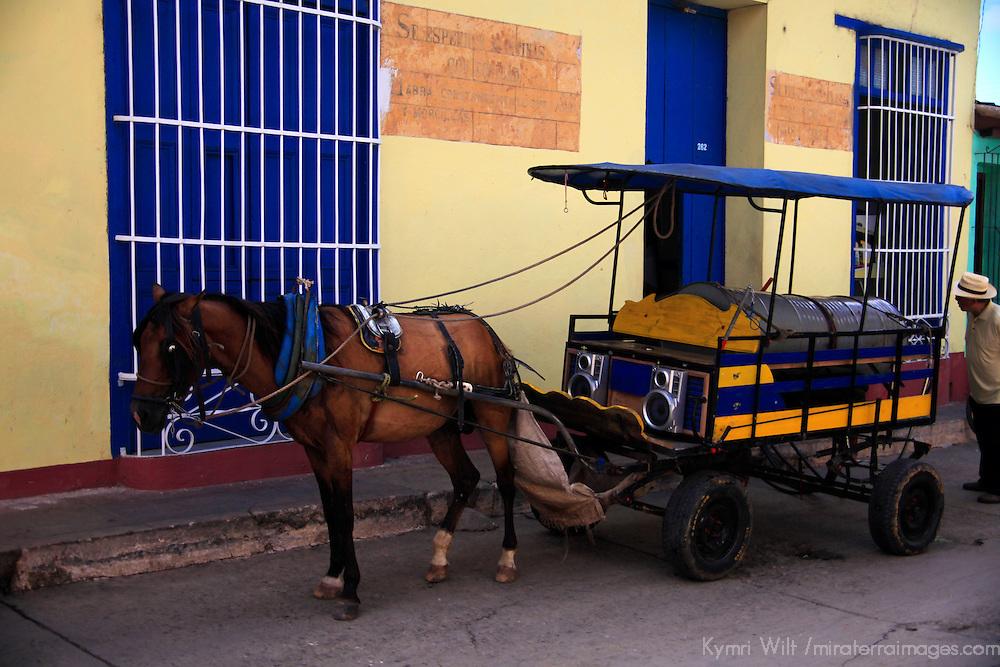 Central America, Cuba, Trinidad. HOrse drawing cart in Trinidad.