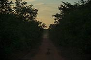 Kamayura indian village - Reserva Indigena do Xingu, Brazil, November 7 of 2012.