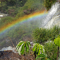 South America, Argentina, Iguacu Falls. Rainbow at Iguacu Falls.