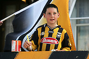 12/9/2004.Aaron Duggan aged 10 from Kilkenny pictured putting the finishing touches to the painted walls and buntings at his home in the city yesterday ahead of this Sundays All Ireland Final against Cork..Picture Dylan Vaughan