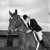 1965 - Pictures from the RDS Spring show for the Belfast Telegraph