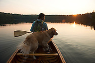 Woman and Golden Retriever canoeing on Grout Pond in the Green Mountain National Forest in Stratton, Vermont.