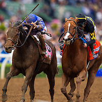 November 01 2014: Judy the Beauty, ridden by Mike Smith and trained by Wesley Ward, wins the Breeders' Cup Filly & Mare Sprint (G1) at Santa Anita Park in Arcadia, California on November 1, 2014. Alex Evers/ESW/CSM
