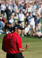 U.S. golfer Tiger Woods celebrates after making a birdie on the 18th hole during the final round of the U.S. Open golf championship at Torrey Pines in San Diego June 15, 2008. Woods will meet Rocco Mediate of the U.S. in an 18 hole playoff on June 16. REUTERS/Rick Wilking (UNITED STATES)
