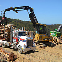 Mountain Loggers operations