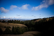 The slopes of Mt. Tamalpais in Marin County, Calif., December 12, 2012.