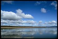 15: SIBERIAN MAMMOTH YANA RIVER, TAIGA, GULAG