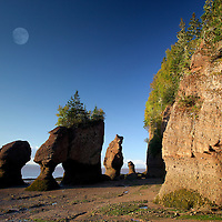 Low Tide with Flower Pot Rocks, Hopewell Rocks Provinical Park, Bay of Fundy, New Brunswick, Canada