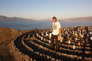 Eduardo Aguilara places luminaries at the Lands End Labyrinth with the Golden Gate Bridge in the background - San Francisco, California