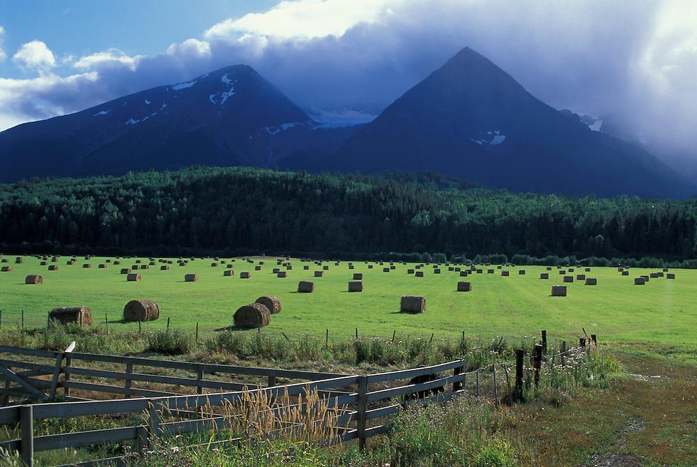 Coast Mountains, near Smithers, British Columbia, Canada