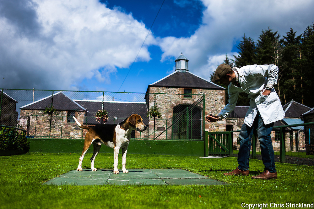 Abbotrule, Bonchester Bridge, Hawick, Scotland, UK. 19th July 2015. Huntsman Johnny Richardson works with doghound Domino in the show ring.