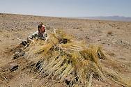 Frans Lanting in camera blind, Kavir National Park, Iran