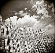 PL10415-00...WASHINGTON - Holga image of Bamboo Sculpture in the Seattle Center.