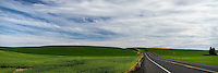 Roadways lead through the green fields of the Palouse region in Southeastern Washington as the hills roll on for miles.
