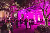 New Orleans Film Fest red carpet 2014