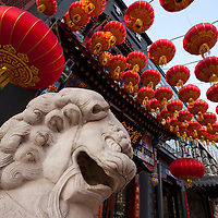 China, Beijing, Dragon statue surrounded by red lanterns at Confucian Temple near Tiananmen  Square on spring morning