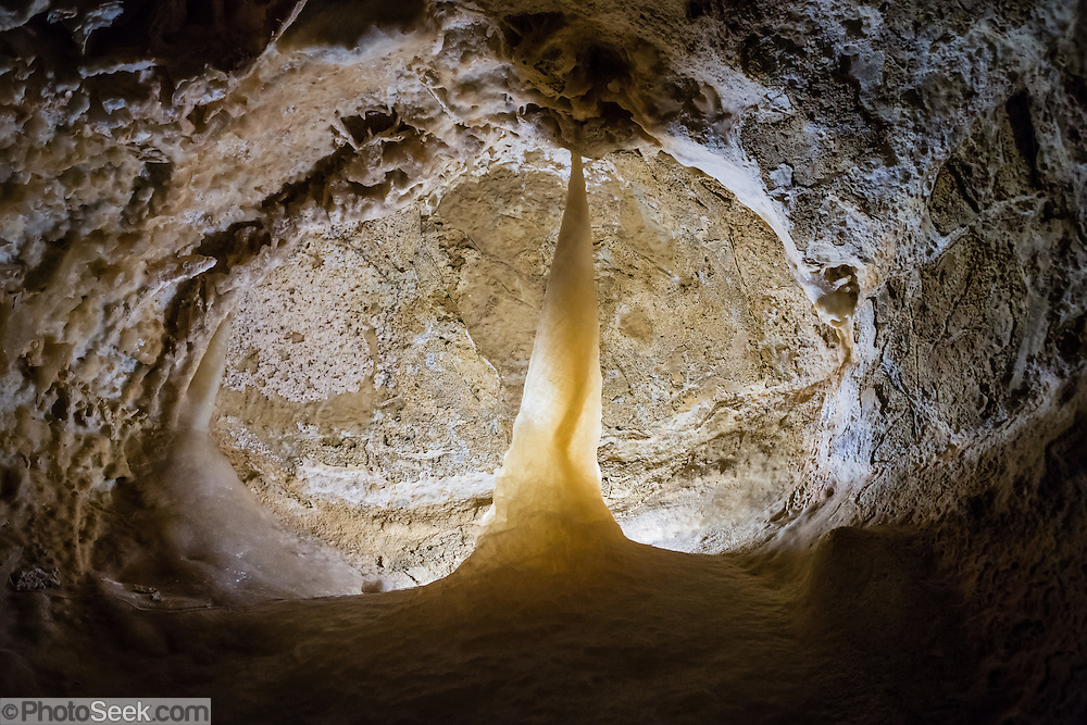 "A sharp tooth shape appears in a rocky mouth of Caverns of Sonora, Sutton County, Texas, USA. The world-class Caverns of Sonora have a stunning and sparkling array of speleothems (helictites, stalactites, stalagmites, flowstone, coral trees, and other calcite crystal formations). National Speleological Society co-founder, Bill Stephenson said, after seeing it for the first time, ""The beauty of Caverns of Sonora cannot be exaggerated...not even by a Texan!"" Geologically, the cave formed between 1.5 to 5 million years ago within 100-million-year-old (Cretaceous) Segovia limestone, of the Edward limestone group. A fault allowed gases to rise up to mix with aquifer water, making acid which dissolved the limestone, leaving the cave. Between 1 and 3 million years ago, the water drained from the cave, after which speleothems begain forming. It is one of the most active caves in the world, with over 95% of its formations still growing. Sonora Caves are on Interstate 10, about half-way between Big Bend National Park and San Antonio, Texas."