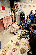 China, Guangxi Province, Yangshou, animal parts and potions dealers