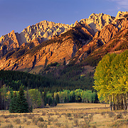 Sawback Range at sunset in Autumn, Banff National Park Alberta Canada