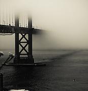 A paddle boarder nears the Golden Gate Bridge in San Francisco, California, USA.