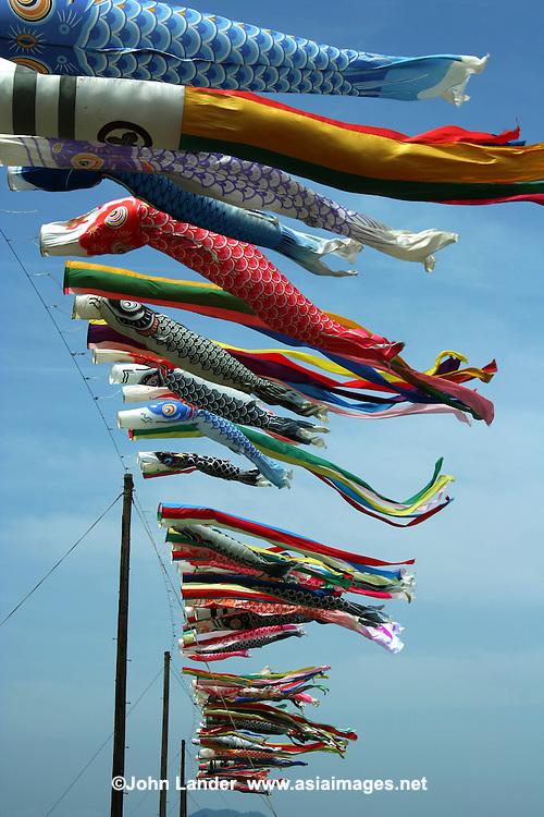 Koinobori japanese carp banners john lander photography for Japanese fish flag