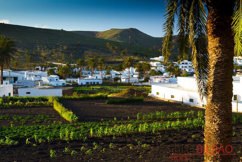 Haria village. Lanzarote, Canary Islands, Atlantic Ocean, Spain.