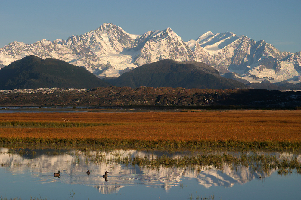 The Fairweather Ranger (15,320') is refected below in still waters. A blue sky rises above the mountains and sedge meadow.