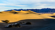 The two little dots on the ridge are two avid photographers. Masquite Sand Dunes, Death Valley National Park, California