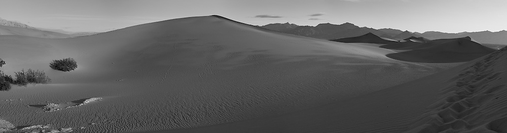 Early Morning Sand Dune Panorama. Composite of 4 images taken with a Nikon D3x and 45 mm f/2.8 PC-E lens (ISO 100, 45 mm, f/16, 1/60 sec). Images processed with Capture One Pro, Focus Magic, PTGui Pro, NIK Silver Efex Pro 2, and converted for web with Photoshop CS5.