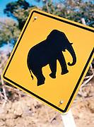 Elephant crossing sign