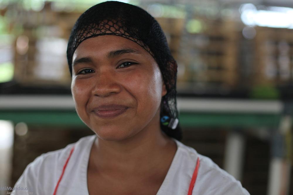 Ana Mojica, Ngäbe member of COOBANA, places fair-trade stickers on banana hands to be exported. COOBANA, Finca 51, Changuinola, Bocas del Toro, Panamá. September 3, 2012.